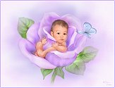 blosso10
