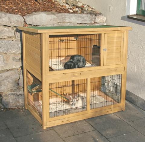 Quelle cage ou clapier choisir for Construire une cabane a lapin exterieur