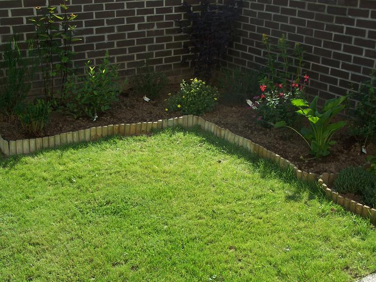 Mon travail au jardin ce matin le blog de supermama for Plante pour bordure dallee