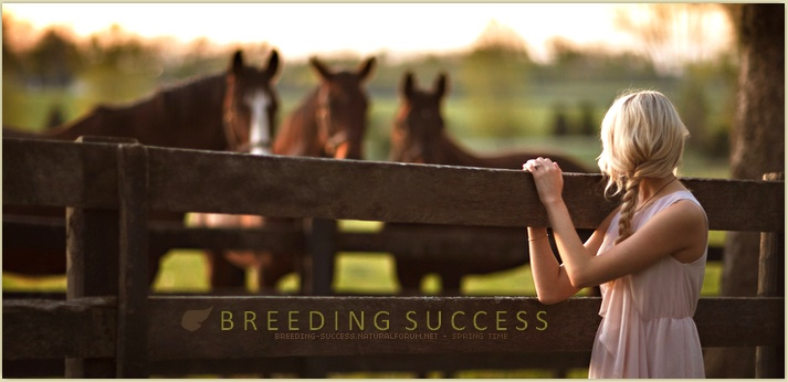 BREEDING SUCCESS • here we go again !