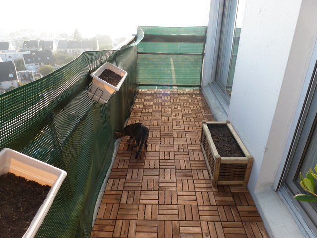 S curiser un grand balcon ciel ouvert forum sur les chats - Protection balcon chat ...