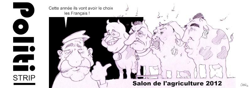 http://i44.servimg.com/u/f44/11/14/07/70/salon_10.jpg