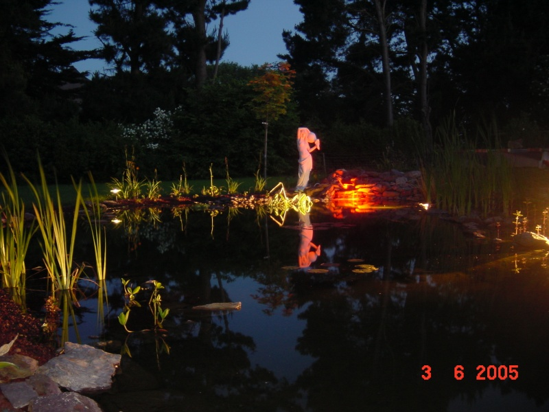 Le bassin de nagol - Le barbecue nice ...