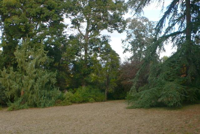 Jardin de la villa thuret antibes for Jardin villa thuret