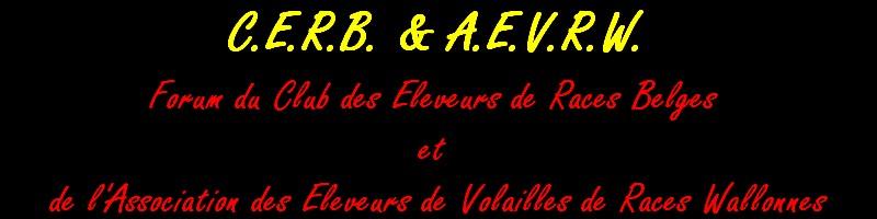 CERB & AEVRW