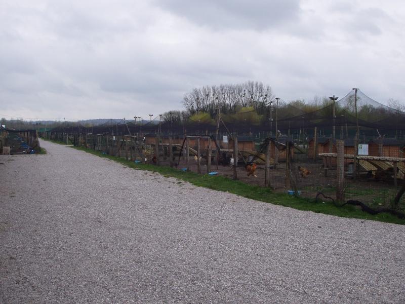 Parc animalier du marais for 78 parc animalier