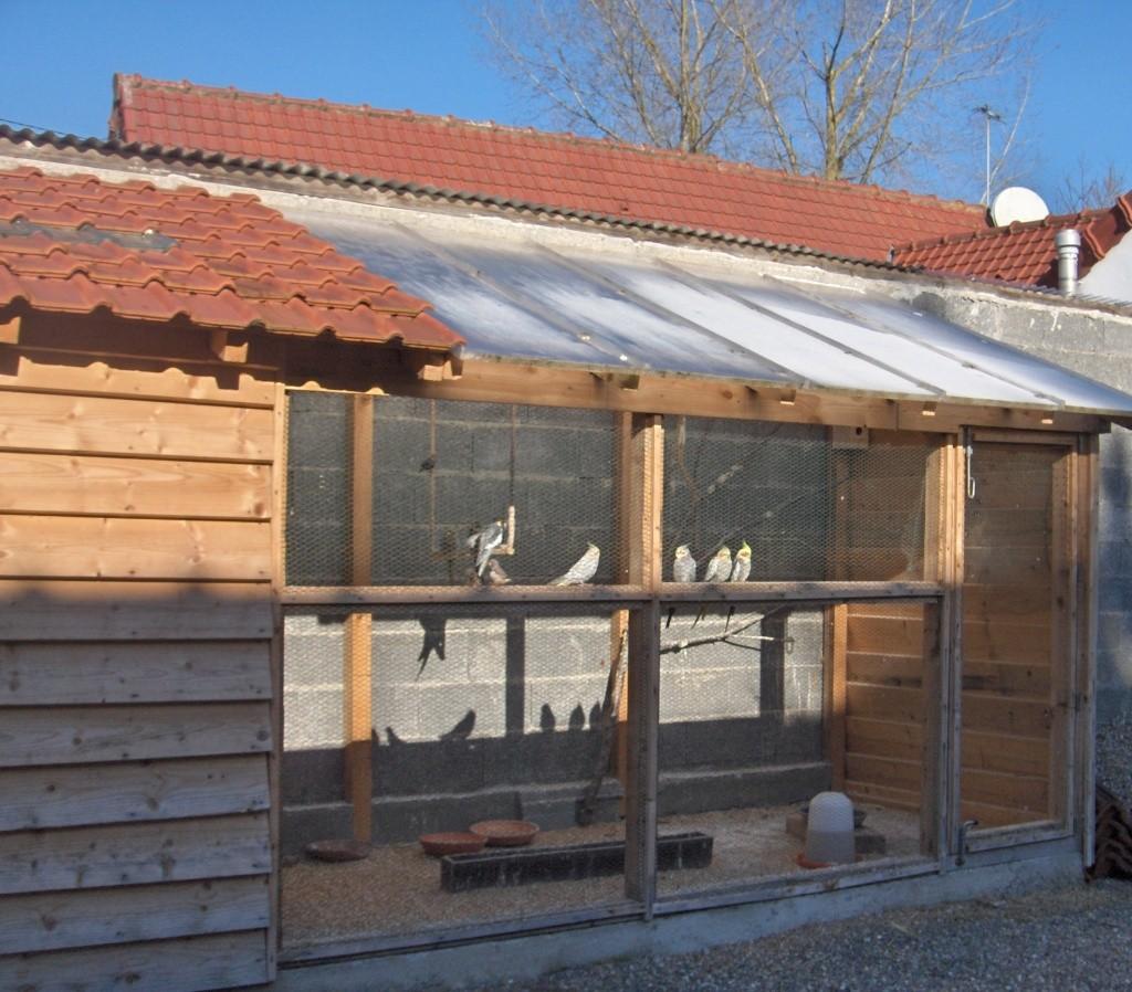 Voliere en bois exterieur 28 images ducatillon for Bois construction exterieur