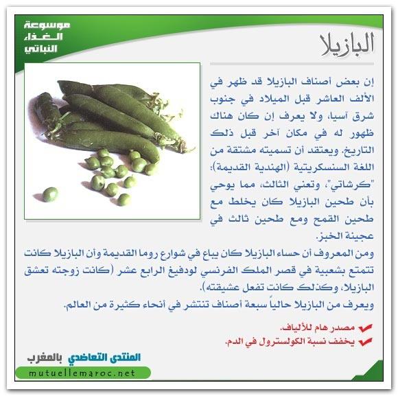 فوائد استعمالات الجلبان البازيلا fo-02710.jpg