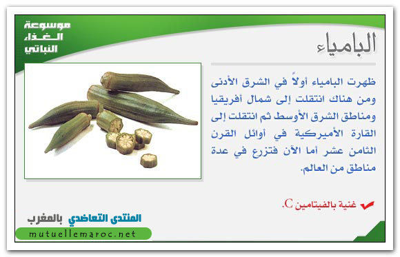 فوائد استعمالات البامياء الباميا fo-02810.png