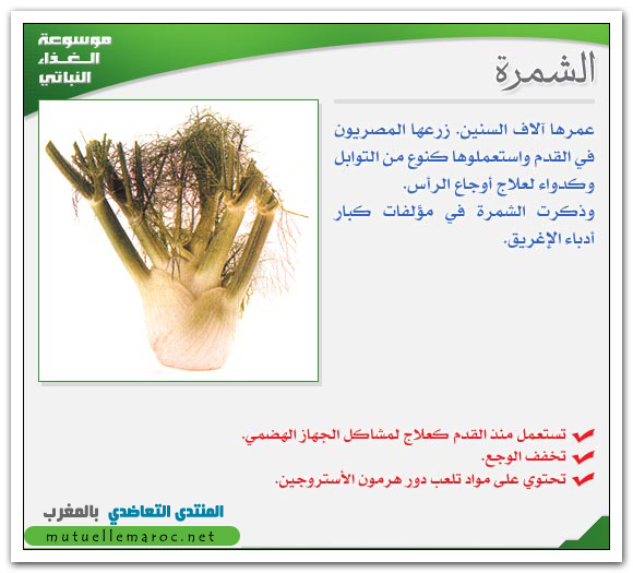 fo 04010 موسوعة للخضر و الفواكه وفوائدها