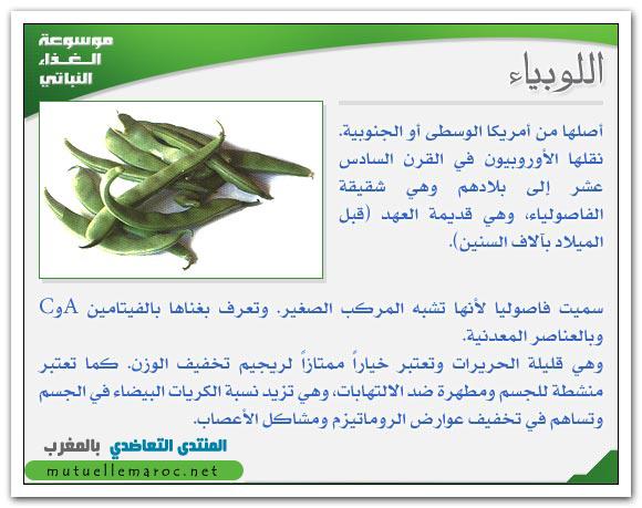فوائد استعمالات اللوبياء الفاصوليا fo-04810.png