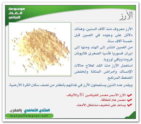 فوائد استعمالات الأرز fo-05410.png
