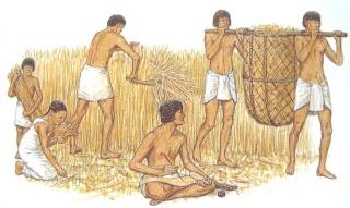 Kết quả hình ảnh cho xã hội cổ đại phương đông