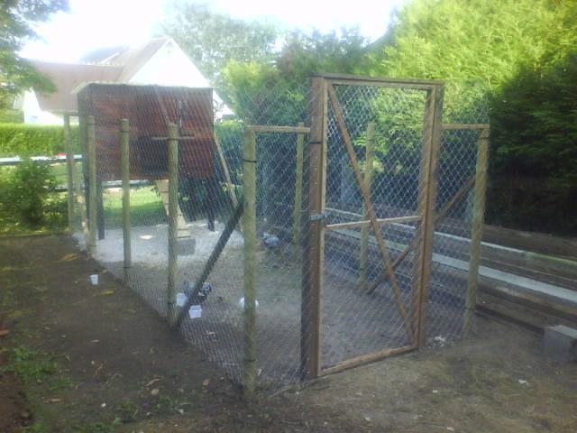 Mon poulaller pour le bien tre de nos poulettes - Poules d ornement pour le jardin ou la basse cour ...