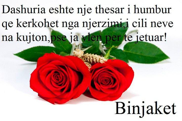poezi dashurie te bukura facebook   pixshark