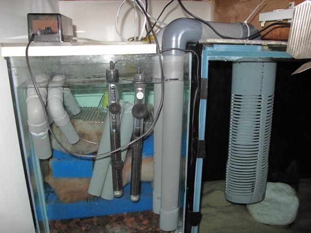 Filtre aquarium fait maison ventana blog for Pompe bassin externe