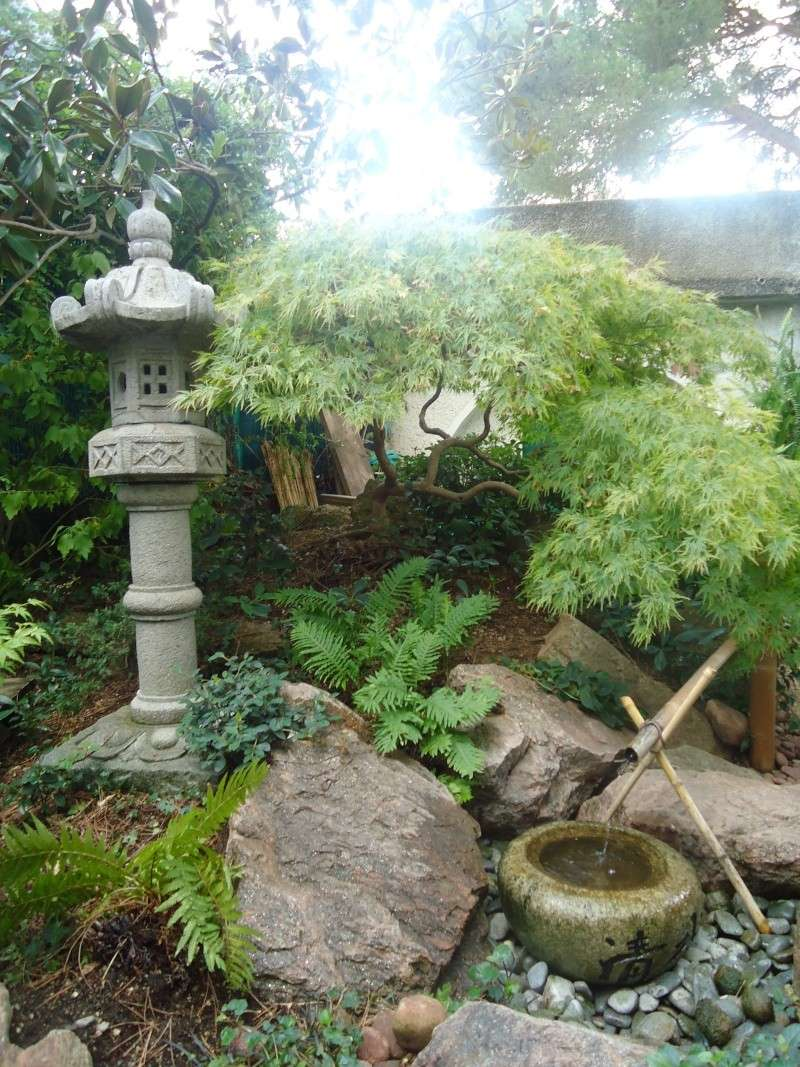 Visite du jardin jean pierre cardinal for Au jardin de jean pierre