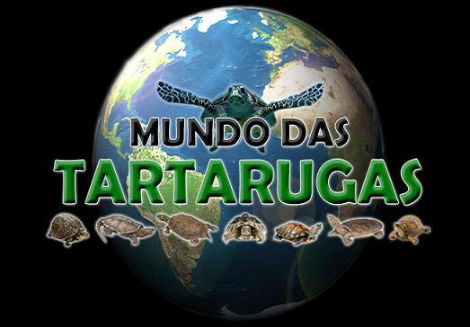 Mundo das Tartarugas