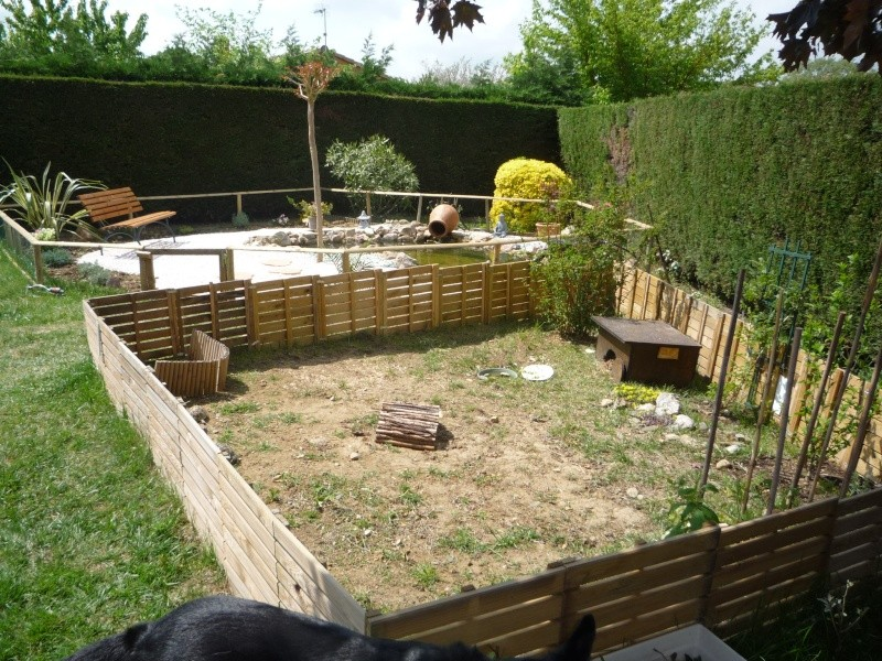 Design amenagement bassin tortue rouen 29 amenagement salon amenagement placard - Bassin naturel jardin rouen ...