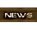 F1aXion News