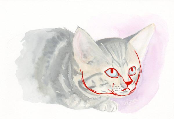 cat00810.jpg