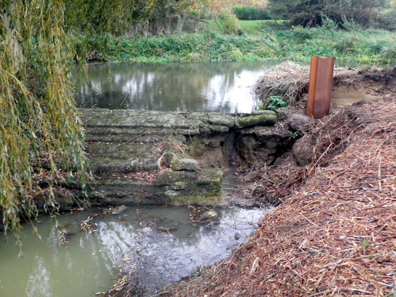 Fish In The Cherwell Can Travel Upstream For The First Time In Hundreds Of Years Thames