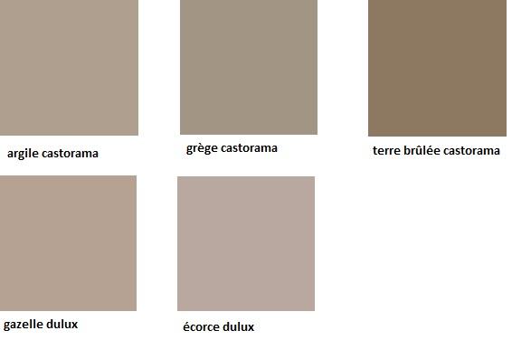 Conseil pour le choix dune belle couleur taupe