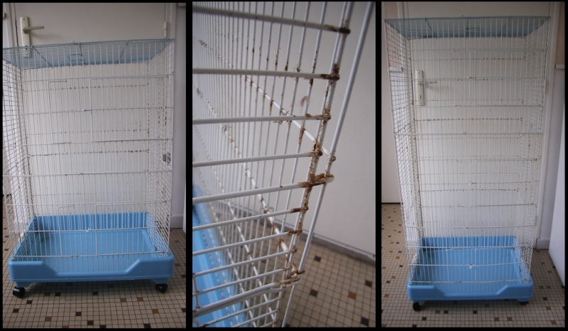 59 1 cage pliable et 1 voli re. Black Bedroom Furniture Sets. Home Design Ideas