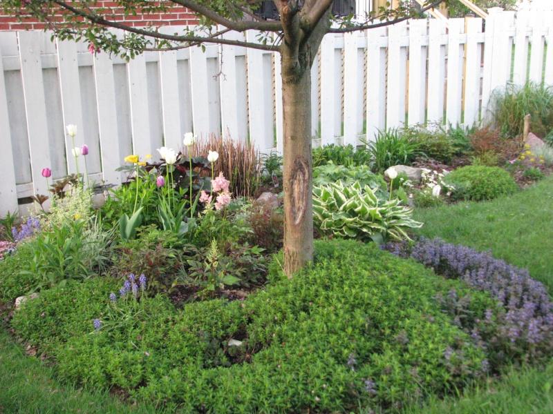 Mon petit paradis - Petit jardin vaudreuil ...