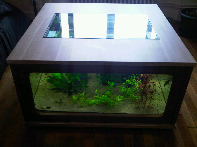 Table Basse Aquarium Occasion Belgique – Phaichicom -> Aquarium Table Basse Pas Cher