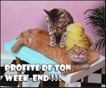 week-e10.jpg