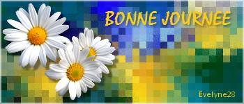 fond_b11.jpg
