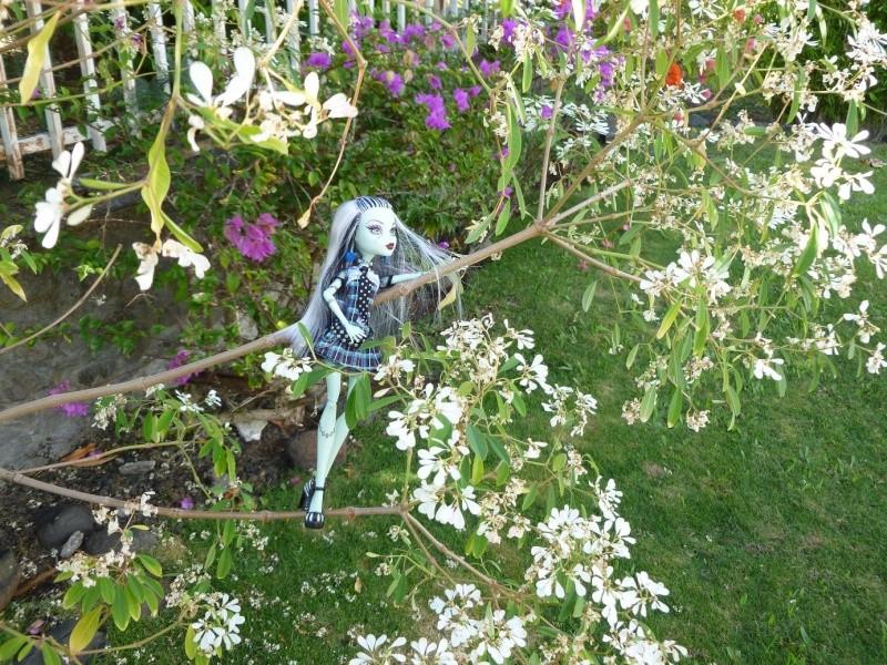 Monster high photo dans le jardin for Le jardin high wine