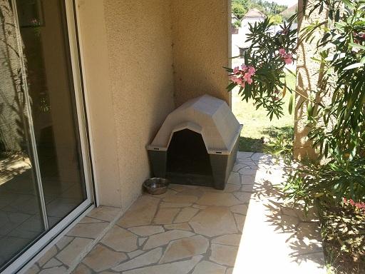 Faire dormir son chien dehors ou à l'intérieur ? - Page 6
