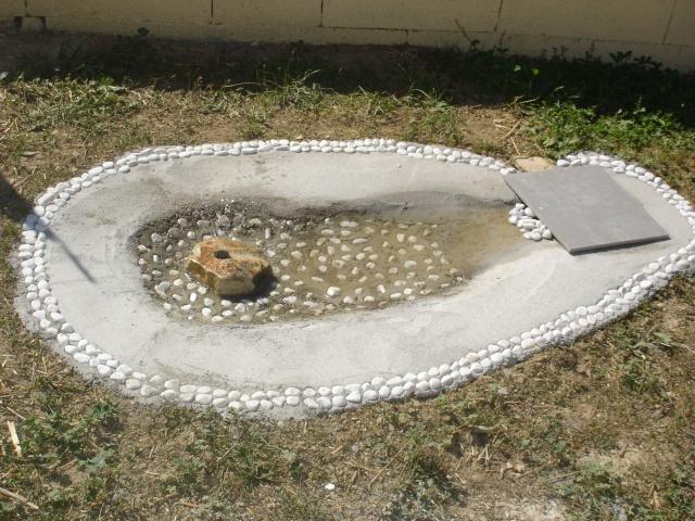 Petit bassin for Bassin exterieur pour tortue