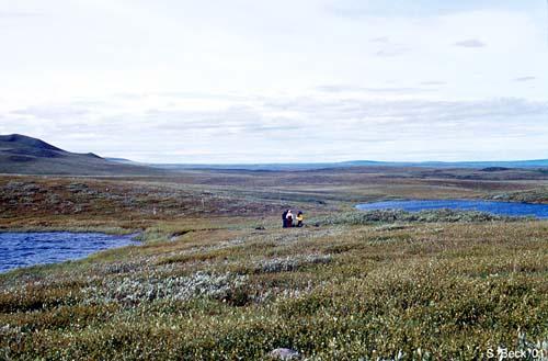 significato permafrost