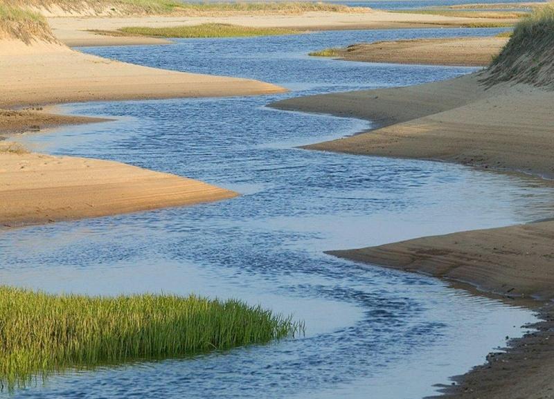 I fiumi giuseppe ungaretti con parafrasi - Portano acqua ai fiumi ...