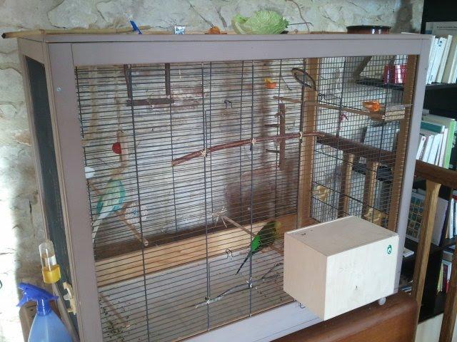 modeles cages et volieres page 11. Black Bedroom Furniture Sets. Home Design Ideas