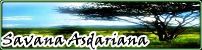 Savana Asdariana