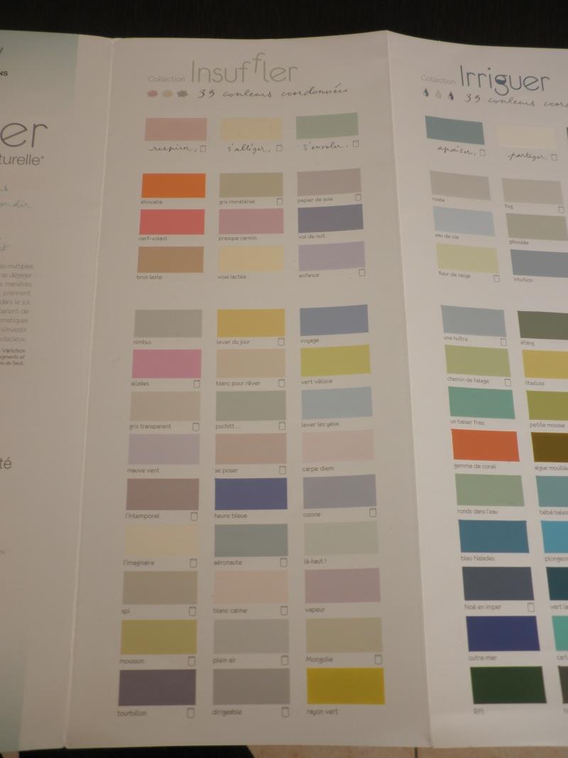 nuancier peinture facade leroy merlin. Black Bedroom Furniture Sets. Home Design Ideas