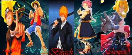 Bleach Last Battle: Alliance Battle