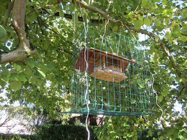 Mangeoire s lective - Solution pour eloigner les chats du jardin ...